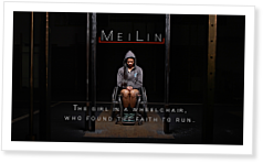 MeiLin McDonald: Never Give Up